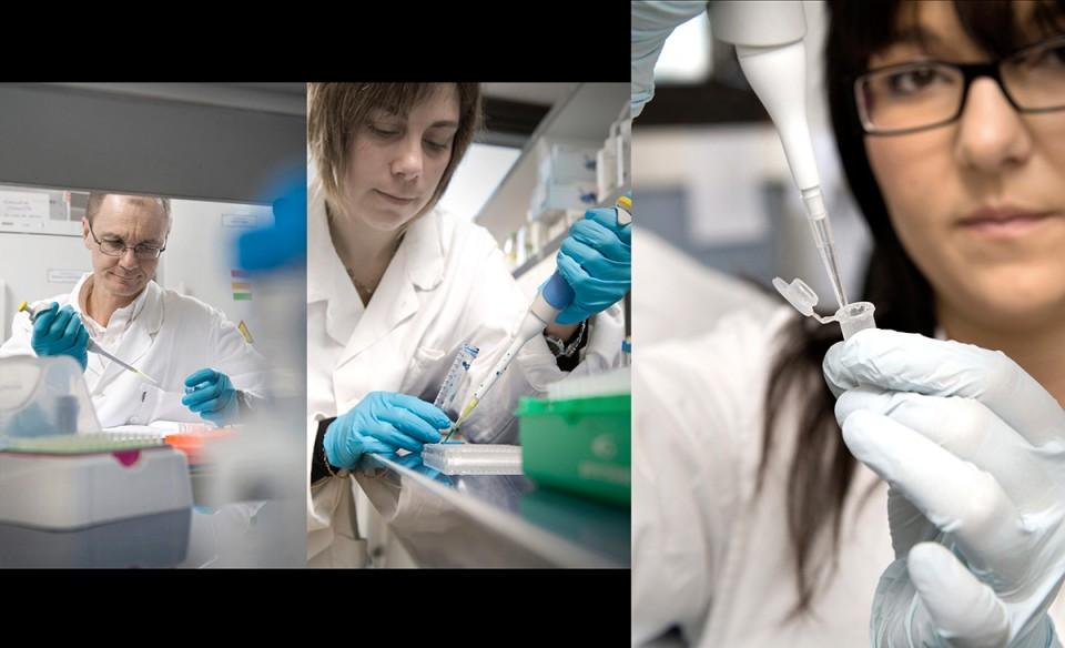 diagnostic immunitaire, industrie pharmaceutique, biotechnologies